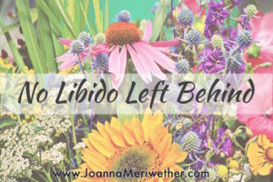 No Libido Left Behind: Wise Video Feedback