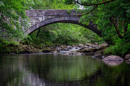 a stone bridge amongst green foliage over a calm stream as a metaphor for change