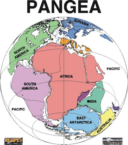 pangea-basic