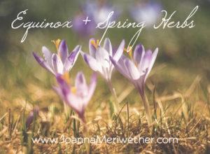 Equinox + Spring Herbs