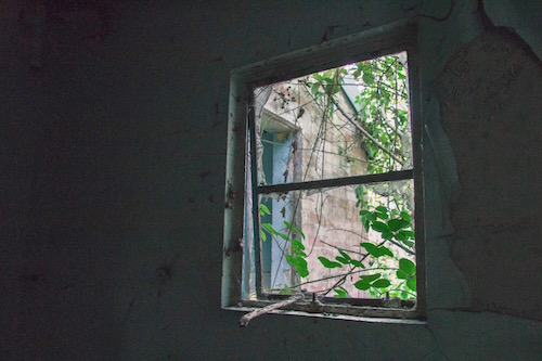 a broken window in a dark room with a branch through the window as a metaphor for life sucking soometimes