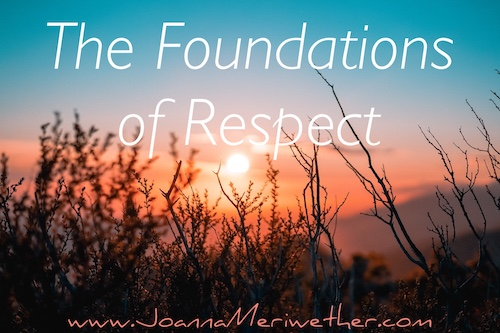"a sunrise with plant shapes in shadow and the words ""The Foundations of Respect"" across the top"